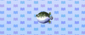 NewLeafBlowFish