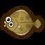 NH-Icon-oliveflounder