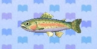 Rainbow trout encyclopedia (New Leaf)