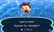 HNI 0084 clam