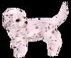 Dalmatianmodeldlccf