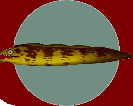 動森-裸胸鱔