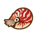 NH-Icon-chamberednautilus