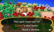 Zucker ACNL Home Setup