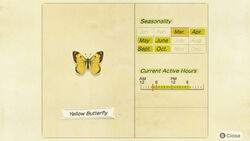 NH-encyclopedia-Yellow butterfly