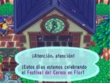 Festival del Cerezo en Flor