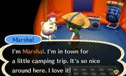Marshall ACNL Camping