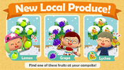 Pocket-camp-fruits