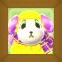 WillowPicACNL