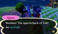 Oarfishcatch