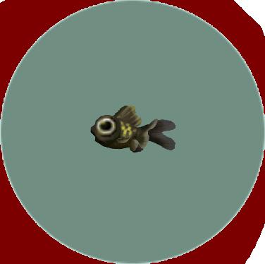 Popeyed Goldfish (City Folk)
