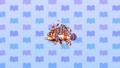 ZebraTurkeyfishNL