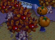 Halloween-TrickorTreat10