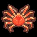 NH-Icon-spidercrab