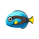 PC-FishIcon-Surgeonfish