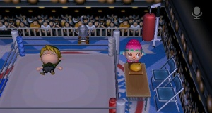 Boxing theme