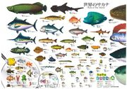 Fishposter
