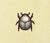 Escarabajo oro NH