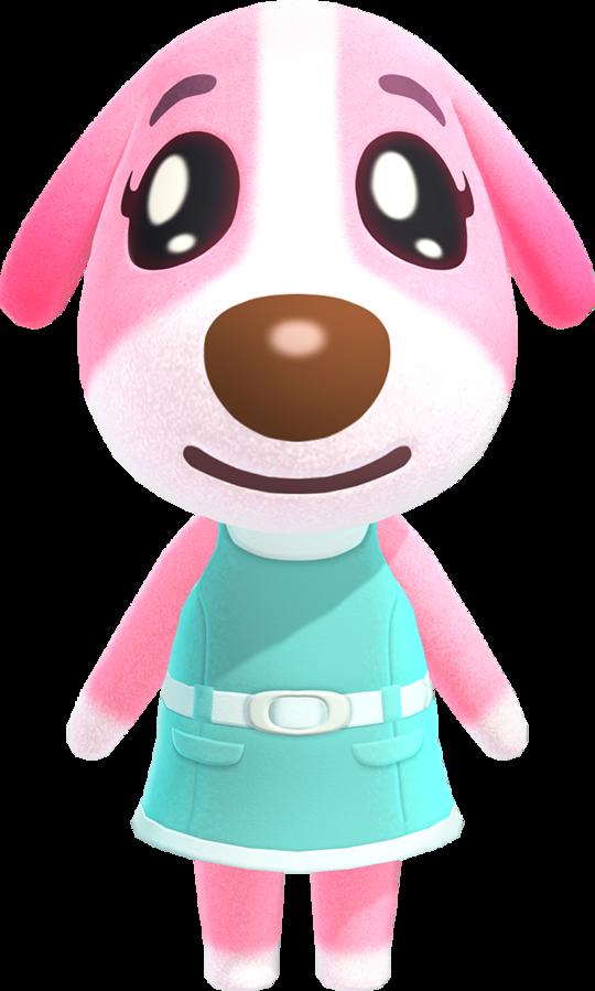 Cookie Animal Crossing Wiki Fandom