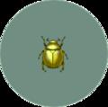 Scarab Beetle (City Folk)