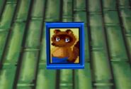 Tom Nook photo