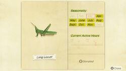 NH-encyclopedia-Long locust