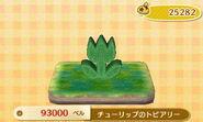 Tulip Topiary