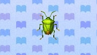 Stinkbug encyclopedia (New Leaf)
