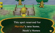 Marshal ACNL Home Setup