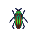 PC-BugIcon-jewel beetle.png