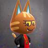 NH-Katt poster