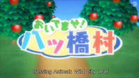 YuruYuri Animal Crossing