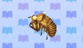 Cicada shell encyclopedia (New Leaf)