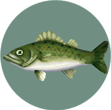 Sea Bass (City Folk)