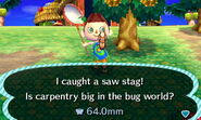 Saw stag beetle new leaf