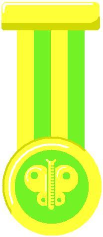 File:Bug Medal.jpg
