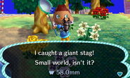 Giant stag beetle new leaf 2