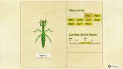 NH-encyclopedia-Mantis