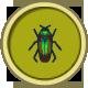 Jewel Beetle (City Folk)