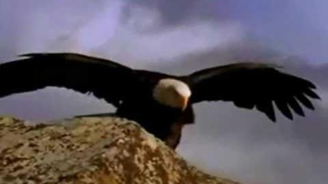 El Vuelo de las Águilas