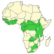 African-Buffalo-Syncerus-caffer-Distribution-map