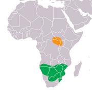 Mapa distribuicao original white rhino