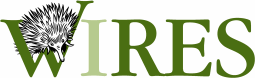 File:Wires logo.png