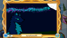 Dark Blue Fox