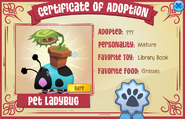 Certificate-of-Adoption Pet-Ladybug