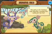 Monkeys only party pop up