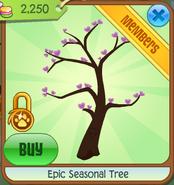 Seasonal Tree Blossoms