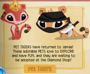 Jamaa-Journal Vol-112 Pet-Tigers