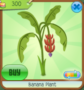 BananaPlant Red(3)