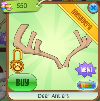 Image of: Common Ostrich Bbcpc Deer Antlers Animal Jam Wiki Fandom Powered By Wikia